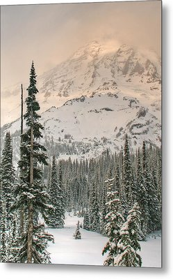 Metal Print featuring the photograph Veiled Mountain by Jeff Cook