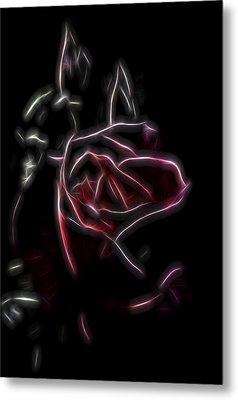 Velvet Rose 2 Metal Print