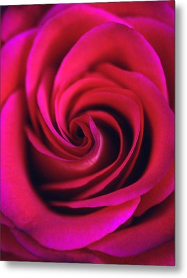 Velvet Rose Metal Print by Kathy Yates