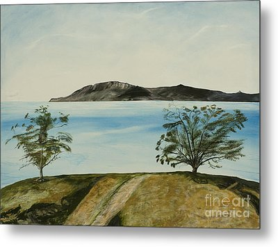 Ventura's Two Trees With Santa Cruz  Metal Print