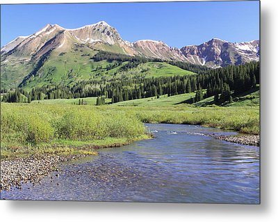 Verdant Valley Metal Print