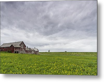 Vermont Barn Grass Dandelion Field Storm Clouds Metal Print by Andy Gimino