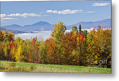 Vermont October Morning Metal Print by Alan L Graham