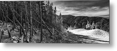 Vermont Winter Mount Mansfield Mountain Forest Snow Black And White Metal Print by Andy Gimino