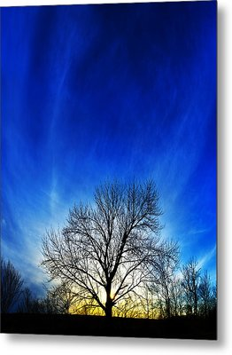 Vernal Sunset Metal Print