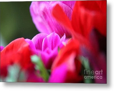 Metal Print featuring the photograph Vibrant Bouquet  by Lynn England