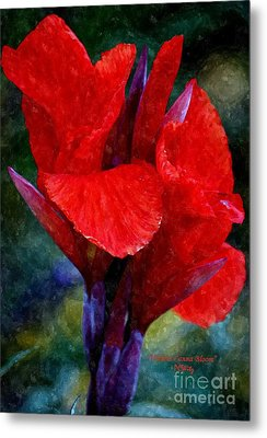 Vibrant Canna Bloom Metal Print