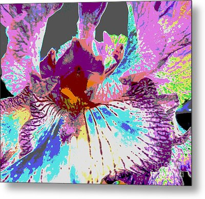 Metal Print featuring the photograph Vibrant Petals by Sally Simon