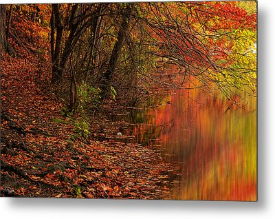 Vibrant Reflection Metal Print
