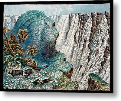 Victoria Falls Buffalo Metal Print by Gustoimages/science Photo Libbrary