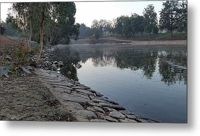View By The Lake Metal Print by Remegio Onia