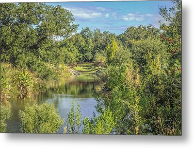 View Down The Creek Metal Print