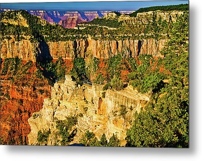 Metal Print featuring the photograph View From Angel Point  by Bob and Nadine Johnston