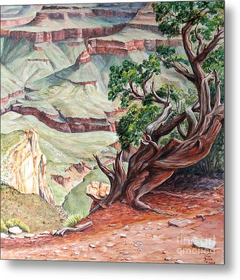 View From Cedar Ridge Trail Metal Print