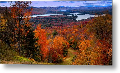 View From Mccauley Mountain II Metal Print by David Patterson