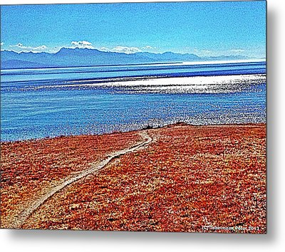View From The Battery At Fort Ebey Metal Print