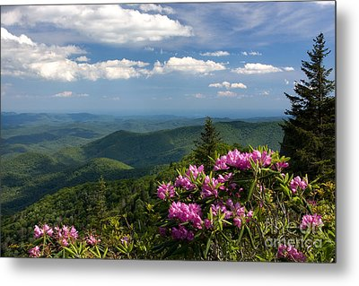 View From The Blue Ridge Parkway  Spring 2010 Metal Print