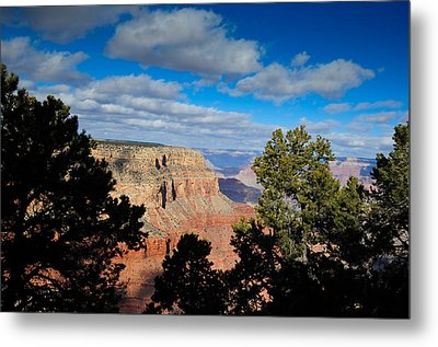 Grand Canyon Through The Junipers Metal Print by Bonnie Fink