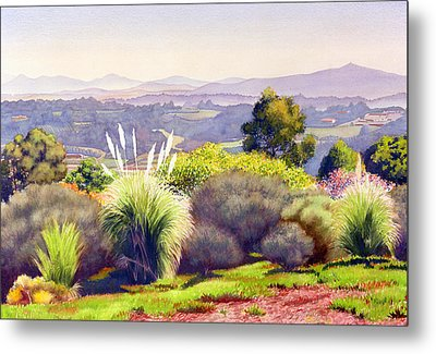 View Of Rancho Santa Fe Metal Print