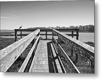 View Of The Elkhorn Slough From A Platform.  Metal Print by Jamie Pham