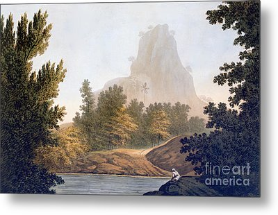 View Of The Jungle Metal Print by William Hodges