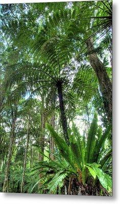 View Of Vegetation In Bali Botanical Metal Print