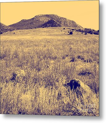View To A Mountain Metal Print by Mickey Harkins