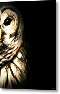 Vigilant In Darkness Metal Print by Lourry Legarde