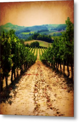 Metal Print featuring the photograph Vigneto Toscana by Micki Findlay