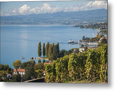 Vines Over Lake Geneva Metal Print