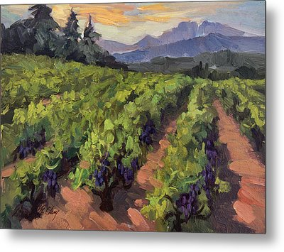 Vineyard At Dentelles Metal Print by Diane McClary