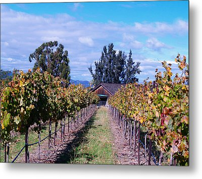 Livermore - Vineyard Barn Metal Print