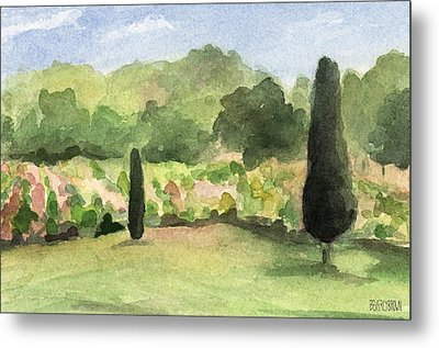 Vineyard In Provence Watercolor Paintings Of France Metal Print by Beverly Brown