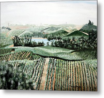 Vineyard On A Foggy Morning Metal Print by Vickie Wright