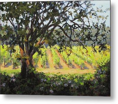 Vineyards Edge Metal Print by Karen Ilari