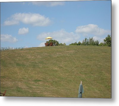 Vineyards In Va - 121243 Metal Print by DC Photographer