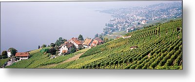 Vineyards, Lausanne, Lake Geneva Metal Print