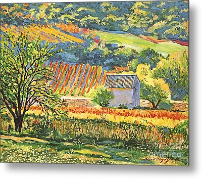 Vineyards Of Provence Metal Print by David Lloyd Glover
