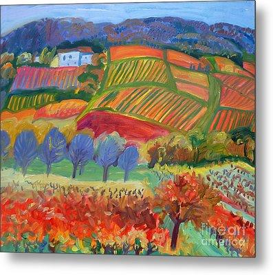 Vineyards. South Of France Metal Print