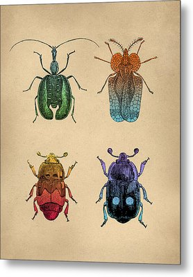 Vintage Beetles Tinted Engraving Metal Print by Flo Karp