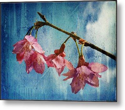Vintage Blossoms Metal Print by Carla Parris