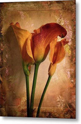 Metal Print featuring the photograph Vintage Calla Lily by Jessica Jenney