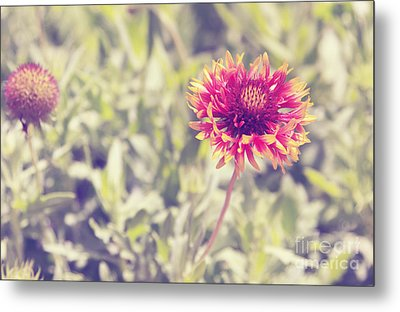 Metal Print featuring the photograph Vintage Flowers by Mohamed Elkhamisy