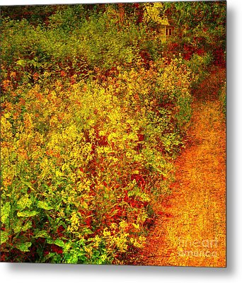 Metal Print featuring the photograph Vintage Garden Path by Terri Gostola