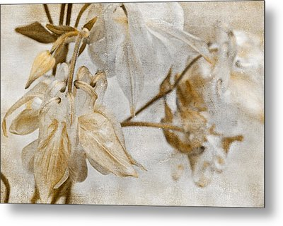 Metal Print featuring the photograph Vintage Neutral Flowers by Peggy Collins