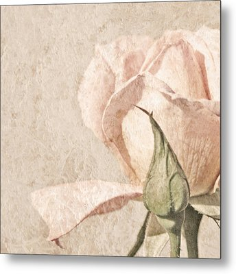 Metal Print featuring the painting Vintage Rose by Brooke T Ryan