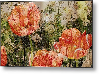 Vintage Tulips Metal Print by France Laliberte