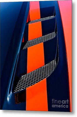 Metal Print featuring the photograph Viper by Linda Bianic