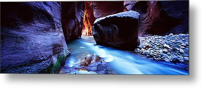 Virgin River At Zion National Park Metal Print by Panoramic Images