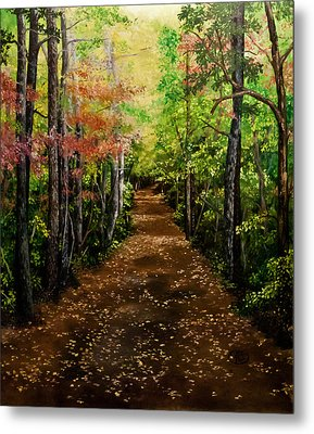 Virginia Path Metal Print by Jessica Tookey